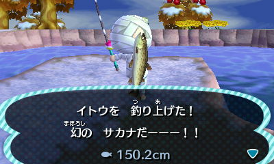 イトウ 釣り方